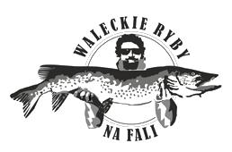 Wałeckie Ryby na Fali